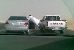En Babouches Sur l'asphalte – Vendredi drôle d'arabe